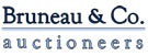 Logo_Bruneau&Co;.jpg